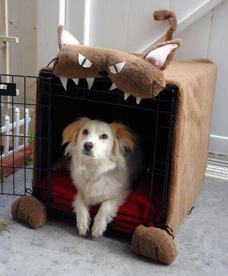 Домик для собак из поролона своими руками
