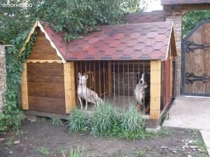 Вольеры для собак своими руками