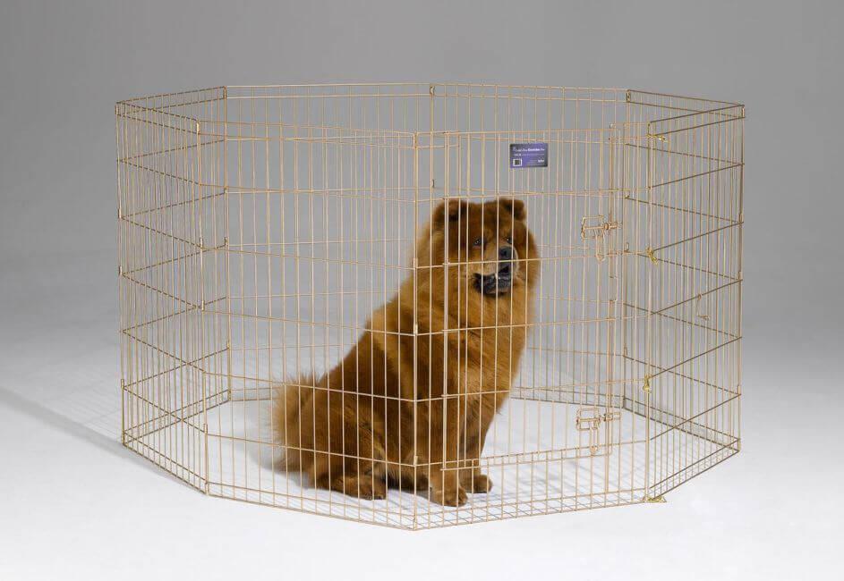 Обзор клеток для собак и инструкция по их изготовлению своими руками