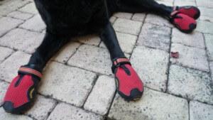 Материалы для собачьей обуви